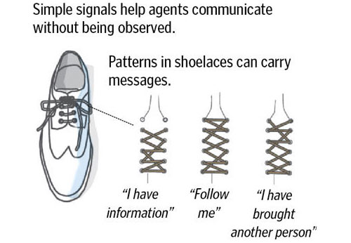 Cia-shoelaces